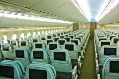 Royal Brunei Dreamliner Interior - Economy