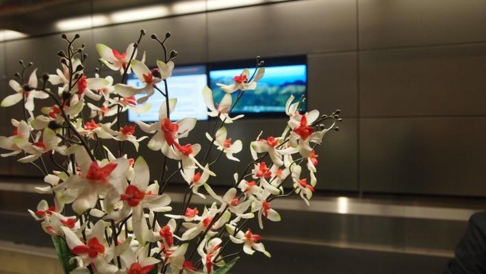 LAX TBIT check in desk for Fiji Airways