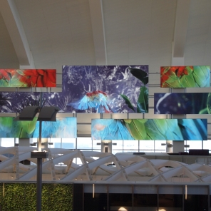 The video screens at TBIT