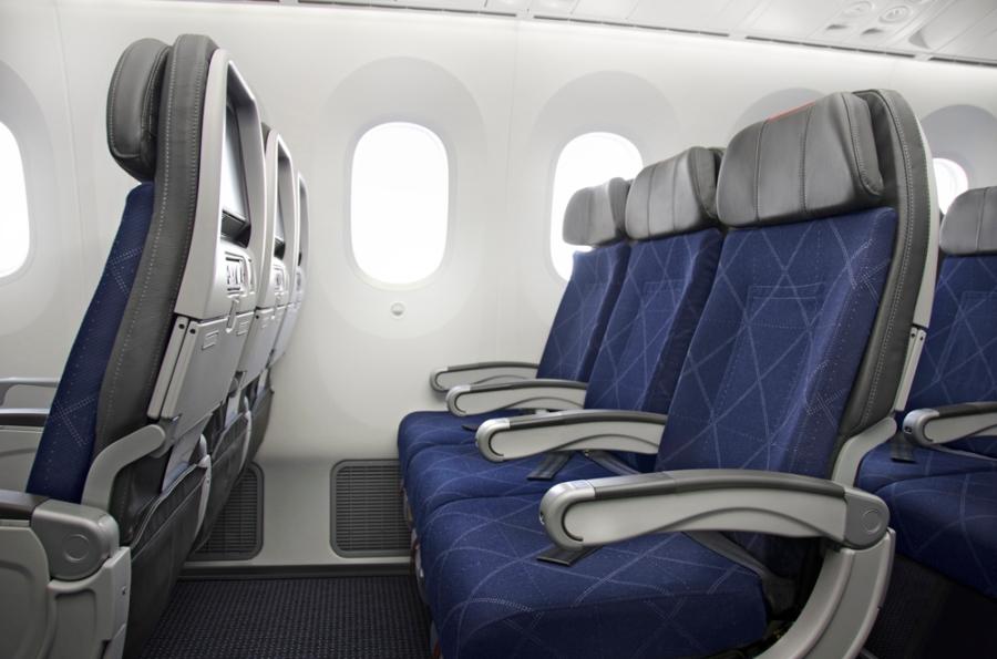 American Airlines 787 - Main Cabin 2_jetnet