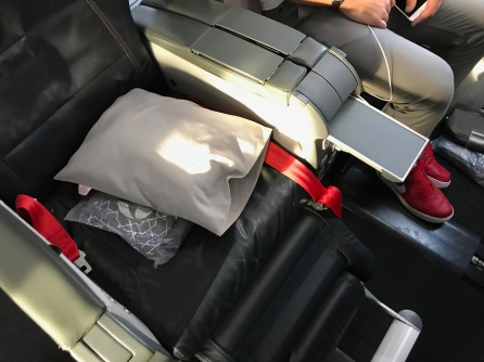 Turkish Airlines 737-800 Business Class Seat