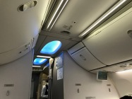 Turkish Airlines 737-800 Business Class Cabin