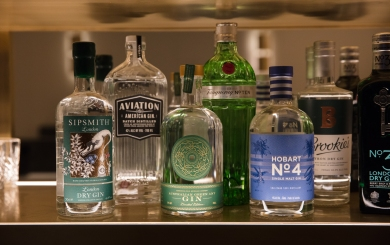17. Gin selection