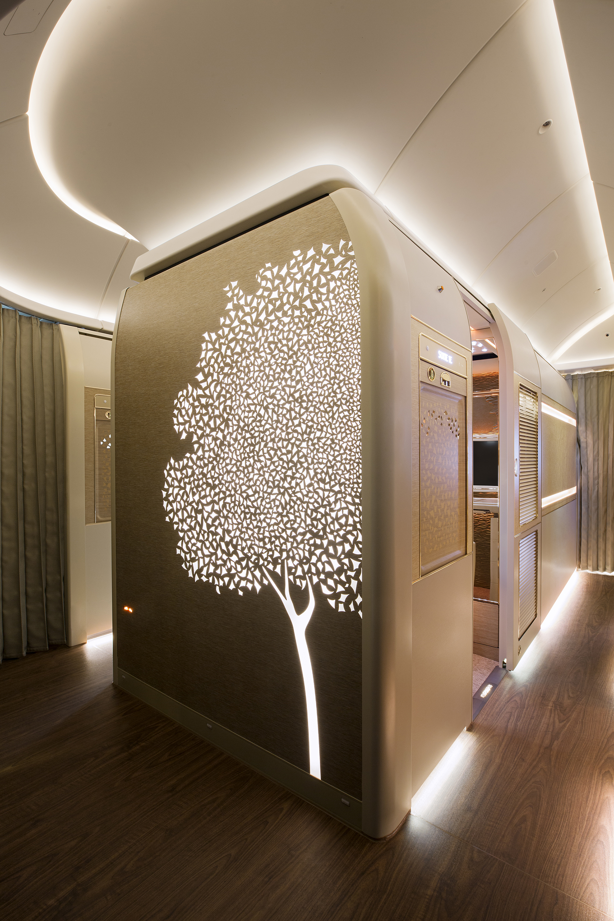 ghaf-tree-motif-in-first-class.jpg