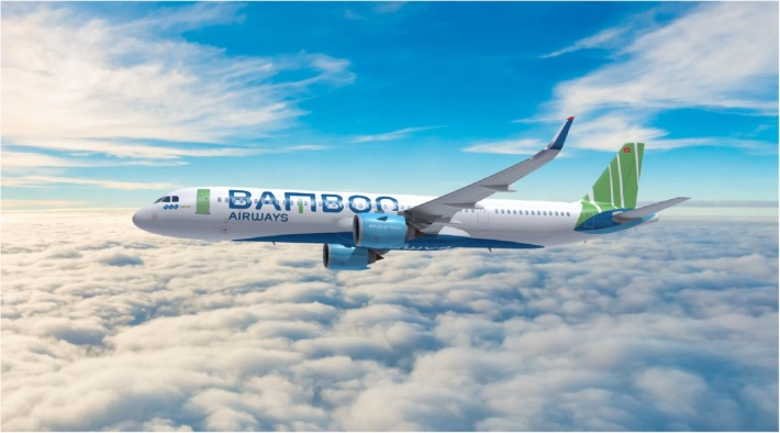 bamboo-livery1