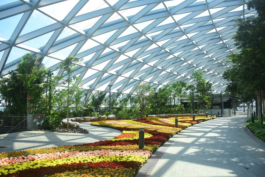 Petal Garden at the Canopy Park